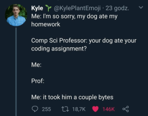 Memes, Sorry, and Tumblr: Kyle @KylePlantEmoji 23 godz.  Me: I'm so sorry, my dog ate my  homework  Comp Sci Professor: your dog ate your  coding assignment?  Me:  Prof:  Me: it took him a couple bytes  255 t0 18,7K 146K newtonpermetersquare:Computer science memes need more attention here