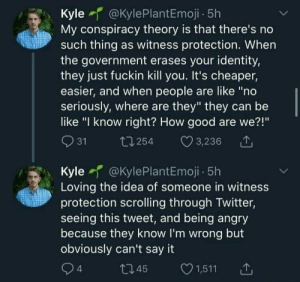 """Me irl: Kyle @KylePlantEmoji - 5h  My conspiracy theory is that there's no  such thing as witness protection. When  the government erases your identity,  they just fuckin kill you. It's cheaper,  easier, and when people are like """"no  seriously, where are they"""" they can be  like """"I know right? How good are we?!""""  Q 31  27 254  3,236 1  Kyle @KylePlantEmoji - 5h  Loving the idea of someone in witness  protection scrolling through Twitter,  seeing this tweet, and being angry  because they know I'm wrong but  obviously can't say it  Q4  O 1,511  27 45 Me irl"""