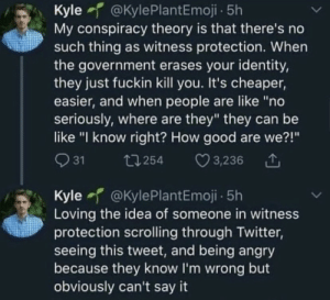 ".: Kyle @KylePlantEmoji - 5h  My conspiracy theory is that there's no  such thing as witness protection. When  the government erases your identity,  they just fuckin kill you. It's cheaper,  easier, and when people are like ""no  seriously, where are they"" they can be  like ""I know right? How good are we?!""  O 31  ♡ 3,236  27 254  Kyle @KylePlantEmoji - 5h  Loving the idea of someone in witness  protection scrolling through Twitter,  seeing this tweet, and being angry  because they know I'm wrong but  obviously can't say it ."