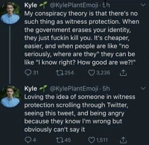 """If i told you than i'd have to kill you: Kyle @KylePlantEmoji - 5h  My conspiracy theory is that there's no  such thing as witness protection. When  the government erases your identity,  they just fuckin kill you. It's cheaper,  easier, and when people are like """"no  seriously, where are they"""" they can be  like """"I know right? How good are we?!""""  ♡ 3,236  O 31  t7 254  Kyle f @KylePlantEmoji - 5h  Loving the idea of someone in witness  protection scrolling through Twitter,  seeing this tweet, and being angry  because they know l'm wrong but  obviously can't say it  94  ♡ 1,511  2745 If i told you than i'd have to kill you"""