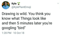 "Twitter, Wild, and Com: Kyle *  @KylePlantEmoji  Drawing is wild. You think you  know what Things look like  and then 5 minutes later you're  googling ""bird""  1:28 PM-10 Oct 18 [SOURCE]"