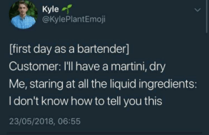 I Dont know how to tell you this: Kyle  @KylePlantEmoji  [first day as a bartender]  Customer: I'll have a martini, dry  Me, staring at all the liquid ingredients:  I don't know how to tell you this  23/05/2018, 06:55 I Dont know how to tell you this