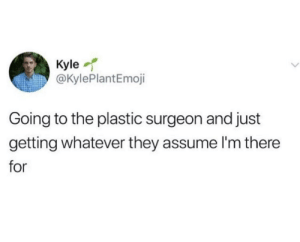 Plastic, Solid, and They: Kyle  @KylePlantEmoji  Going to the plastic surgeon and just  getting whatever they assume l'm there  for Sounds like a solid plan