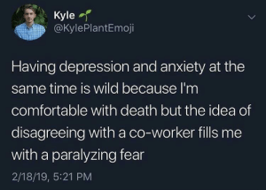 Comfortable, Anxiety, and Death: Kyle  @KylePlantEmoji  Having depression and anxiety at the  same time is wild because l'm  comfortable with death but the idea of  disagreeing with a co-worker fills me  with a paralyzing fear  2/18/19, 5:21 PM Meirl