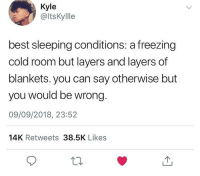 Tumblr, Best, and Sleeping: Kyle  @ltsKyllle  best sleeping conditions: a freezing  cold room but layers and layers of  blankets. you can say otherwise but  you would be wrong.  09/09/2018, 23:52  14K Retweets 38.5K Likes what do you prefer