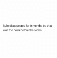God, Girl Memes, and Kylie: kylie disappeared for 9 months bc that  was the calm before the stormi oh god