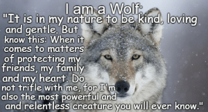 "native americans Memes & GIFs - Imgflip: l am a Wolf  ""It is in my nature to be kind, loving  and gentle. But  know this: When it  comes to matters  of protecting my  friends, my family  and my heart. Do  not trifle with me, for I'm  also the most powerful and  and relentless creature you will ever know."" native americans Memes & GIFs - Imgflip"