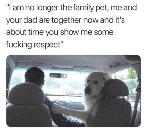 "Show me some respect by Holofan4life FOLLOW 4 MORE MEMES.: ""l am no longer the family pet, me and  dad are together now and it's  your  about time you show me some  fucking respect"" Show me some respect by Holofan4life FOLLOW 4 MORE MEMES."