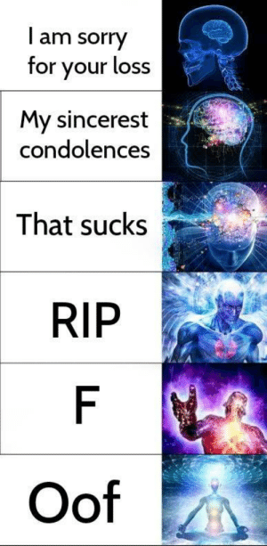 Dank, Memes, and Sorry: l am sorry  for your loss  My sincerest  condolences  That sucks  RIP  Oof When someone dies by Dylanb249 MORE MEMES