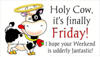 Its Finally Friday: l Calls It Live IS  It  Holy Cow,  it's finally  Friday!  hope your Weekend  is udderly fantastic!