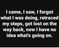 Saw, Lost, and Back: l came, I saw, I forgot  what I was doing, retraced  my steps, got lost on the  way back, now I have no  idea what's going on.