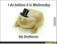 funny wednesday: l do believe it is Wednesday  My Bretheren  funny
