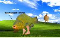 """Reddit, Chicken, and Com: l do not accept the chicken  bark  lom did not accept the chicken <p>[<a href=""""https://www.reddit.com/r/surrealmemes/comments/7ynubf/wise_tom_can_see_through_your_deceit/"""">Src</a>]</p>"""