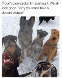 """Follow me @antisocialtv @lola_the_ladypug @x__social_butterfly__x @x__antisocial_butterfly__x: """"l don't care Becky! I'm posting it. We all  look good. Sorry you can't take a  decent picture."""" Follow me @antisocialtv @lola_the_ladypug @x__social_butterfly__x @x__antisocial_butterfly__x"""