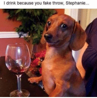 Don't judge me, Stephanie. Repost the fabulous @diaryofaskimpybitch 🦄 follow follow @diaryofaskimpybitch @diaryofaskimpybitch @diaryofaskimpybitch: l drink because you fake throw, Stephanie.. Don't judge me, Stephanie. Repost the fabulous @diaryofaskimpybitch 🦄 follow follow @diaryofaskimpybitch @diaryofaskimpybitch @diaryofaskimpybitch