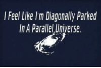 Parallels Universe: l Feel Like I'm Diagonally Parked  In A Parallel Universe.