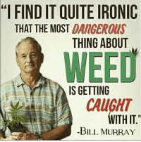 "Ironic, Memes, and Weed: ""l FIND IT QUITE IRONIC  THAT THE MOST DANGEROUS  THING ABOUT  WEED  IS GETTING  CAUGHT  WITH IT  -BILL MURRAY 😳 @weedlaughs420"