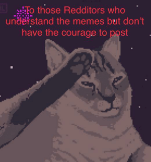 I salute you.: L HTo those Redditors who  understand the memes but don't  have the courage to post I salute you.