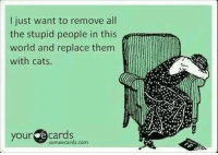 Stupid People Meme: l just want to remove all  the stupid people in this  world and replace them  with cats.  your  cards  some ecards, com