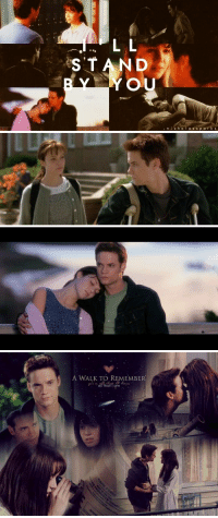 Memes, 🤖, and S&p: L L  STAND  YOU  ni cho  l a s s p a r k s   A WALK TO REMEMBER  Rauk  all that I am . A Walk To Remember