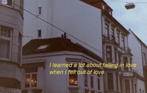 Love, Falling in Love, and In Love: l learned a lot about falling in love  when I felt out of love