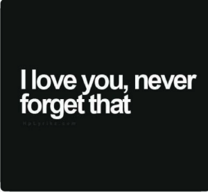 Love, Never, and You: l love you, never  forgef that