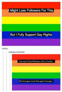 Funny, Love, and Tumblr: l Might Lose Followers For This  But I Fully Support Gay Rights  mrsklow:  You won't lose followers, this is Tumblr  We love gays more than gays love gays