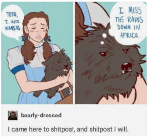 Africa, Wizard of Oz, and I Came: L MISS  THE RAINS  DDWN IN  AFRICA  TOTO  KANSAS  bearly-dressed  I came here to shitpost, and shitpost I will. The new Wizard of Oz looks great