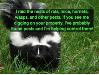 Im Helping: l raid the nests of rats, mice, hornets,  wasps, and other pests. If you see me  digging on your property, I've probably  found pests and I'm helping control them!