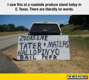 Saw, Tumblr, and Blog: l saw this at a roadside produce stand today in  E. Texas. There are literally no words.  20OKEENE  TATER MATER  IL PE P  THE META PICTURE epicjohndoe:  Education Cuts Aftermath