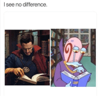 No Difference: l see no difference.