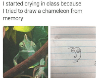 Chameleon: l started crying in class because  I tried to draw a chameleon from  memory