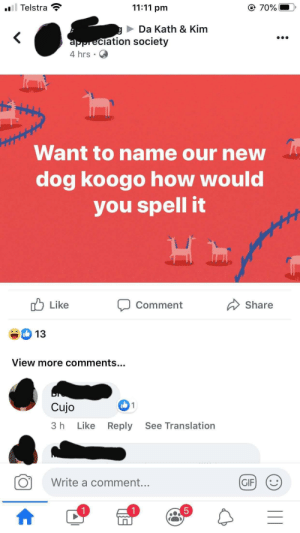 She really asked a tv shows group how to spell the name of the dog on the show.: l Telstra  11:11 pm  @ 70%  Da Kath & Kim  appreciation society  4 hrs  Want to name our new  dog koogo how would  you spell it  Like  Share  Comment  13  View more comments..  1  Cujo  Like  See Translation  Reply  3 h  Write a comment...  GIF  5  1  LO She really asked a tv shows group how to spell the name of the dog on the show.