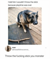 Fucking, Monster, and Him: l told him I wouldn't throw the stick  because playtime was over  @Bestmemes  mav  @meadhbhoconnor  Throw the fucking stick you monster Just wants to play