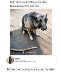 Fucking, Monster, and Devil: l told him I wouldn't throw the stick  because playtime was over  @Bestmemes  mav  @meadhbhoconnor  Throw the fucking stick you monster Literal devil