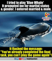 "whaling: l tried to play 'Blue Whale'  It prompted me for marital status  & gender. I entered married & male.  LAUGHING  It flashed the message:  ""You've already completed the final  task, you can't play the game again"""