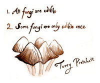 Terry Pratchett, a true god of the comic truth.  --DEATH OF RATS, who is one of his most loyal creations: l. Ung1 are  edi  2. ome fungi are only edible once  Pratchett  erry Terry Pratchett, a true god of the comic truth.  --DEATH OF RATS, who is one of his most loyal creations