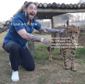 Meme, Windows, and Linux: l use arch btw  product support  for software that only  supports windows, mac,  and apt-based linux distros I feel like this meme format would do well here