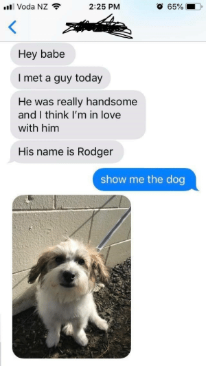 Predictable GF: l Voda NZ  O 65%  2:25 PM  Hey babe  I met a guy today  really handsome  and I think I'm in love  He was  with him  His name is Rodger  show me the dog Predictable GF