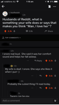 "officialyoda:  positive-memes: It's not really a meme but this is just so wholesome  swans can be gay : l vodafone AU  1:18 am  r/AskReddit  n 13h  Husbands of Reddit, what is  something your wife does or says that  makes you think ""Man, I love her""?  6.3k  2.0k  Share  1I TOP COMMENTS  8h  12h  I snore real loud. She said it was her comfort  sound and helps her fall asleep.  Reply 6.3k  6h  My wife is deaf. I snore. She says she likes it  when I purr:)  19.1k  Probably the cutest thing I'Il read today  . 1h  Swans can be gav  Add a comment officialyoda:  positive-memes: It's not really a meme but this is just so wholesome  swans can be gay"