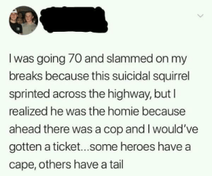 Homie, Memes, and Heroes: l was going 70 and slammed on my  breaks because this suicidal squirrel  sprinted across the highway, but l  realized he was the homie because  ahead there was a cop and I would've  gotten a ticket...some heroes have a  cape, others have a tail Others have a tail via /r/memes https://ift.tt/2N4OVub