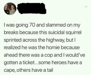 Dank, Homie, and Memes: l was going 70 and slammed on my  breaks because this suicidal squirrel  sprinted across the highway, but l  realized he was the homie because  ahead there was a cop and I would've  gotten a ticket...some heroes have a  cape, others have a tail Not all heroes wear capes. by radowanhabib MORE MEMES