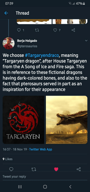 """A pterosaur has been named Targaryendraco: l47%  07:39  Thread  alv.3  1  7  Borja Holgado  @pterosaurios  We choose #Targaryendraco, meaning  """"Targaryen dragon"""", after House Targaryen  from the A Song of Ice and Fire saga. This  is in reference to these fictional dragons  having dark-colored bones, and also to the  fact that pterosaurs served in part as an  inspiration for their appearance  TARGARYEN  16:37 18 Nov 19 Twitter Web App  9 Likes  Tweet your reply  O  II A pterosaur has been named Targaryendraco"""