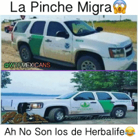 Se pasan de vergas😂😂 Follow @wtfmexicans for more...: La Pinche Migra.  @WTFMEXICANS  Ah No Son los de Herbalife Se pasan de vergas😂😂 Follow @wtfmexicans for more...