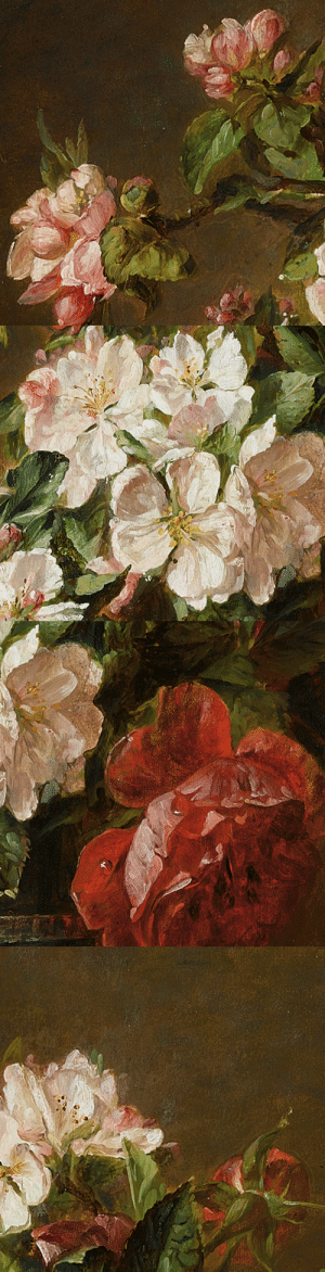 "laclygrantham:  ""A Still Life Of Roses And Apple Blossom"" Adriana-Johanna Haanen(Dutch, 1814-1895)  : laclygrantham:  ""A Still Life Of Roses And Apple Blossom"" Adriana-Johanna Haanen(Dutch, 1814-1895)"