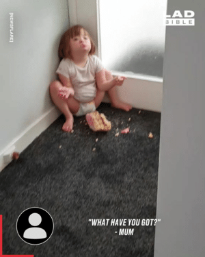 """You can't turn you back on toddlers for a second 🙈🙈: LAD  3IBLE  """"WHAT HAVE YOU GOT?""""  -MUM  [NEWSFLARE] You can't turn you back on toddlers for a second 🙈🙈"""