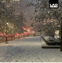 Beautiful, Memes, and New York: LAD  BIBL E New York in the snow is just beautiful 😍 @camatta