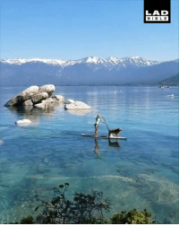 Paddling in Lake Tahoe is absolute travel goals! 😍: LAD  BIBL E Paddling in Lake Tahoe is absolute travel goals! 😍