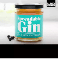 Unbelievable news for gin lovers! 😍👇 (@firebox): LAD  BIBL E  Spreadable  Gin  gin & tonic marmalade Unbelievable news for gin lovers! 😍👇 (@firebox)