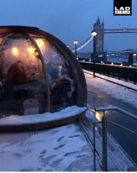 Christmas, Memes, and London: LAD  BIBL E These igloos in London are the perfect hangout spot over Christmas 😍 - @lucianohcorrea